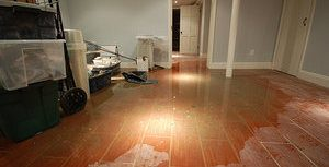 A Flooded Home Can Lead To A Mold Infestation