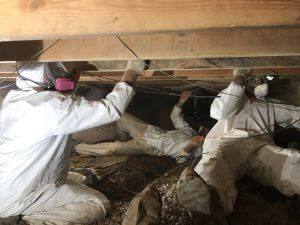 Water And Mold Removal In A Crawlspace