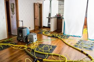 Drying And Dehumidifying Services After A House Flood